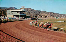 Vintage Postcard Ruidoso downs Horse Racing track NM Lincoln County