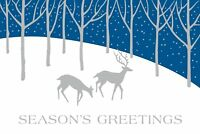 """Boxed Christmas Cards Winter Deer Design, 4"""" x 6"""", 16 Cards and 17 Envelopes"""