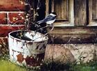 John Rossini Chickadee at the Door bird Print 16 x 12