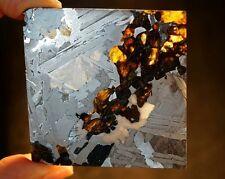 SEYMCHAN PALLASITE METEORITE SLICE EXTRATERRESTRIAL GIFT FROM SPACE