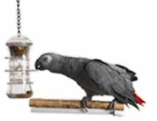 Parrot Toy Bird Toy Tug & Pull Foraging Feeder for Treats