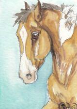 ACEO original Watercolor Art Card Horse Buckskin tobiano pinto Stock colt foal