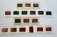 Lot of Norvell's Color Slides & INAH Magnolia Gardens, Pringle House, Cypress ++