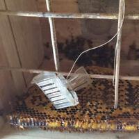 Attrezzatura per apicoltore apicoltore a beccuccio in plastica da 1pc C uh