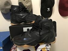 Nike Lebron James XIII 13 Black Lion Safari 807219-001 Size 8