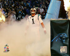 CAM NEWTON 2015 NFC Champ Game, Carolina Panthers LICENSED poster pic 8x10 photo