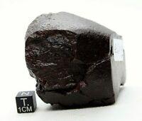 CHONDRITE METEORITE 261 gram FROM OUTER SPACE  METEORITE