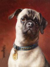 PAINTING ANIMAL PORTRAIT REICHERT MOPS PUPPY PUG CUTE ART PRINT LAH461A