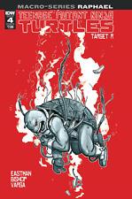 Teenage Mutant Ninja Turtles Macroseries Raphael #1 B TMNT Comic Book 2018 - IDW