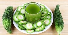 Karawila (Karela)/Green Bitter Melon The Wonder Cure forDiabetes/10 Finest Seeds