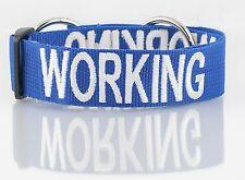 Dog Pet Collar Semi Choke Heavy Duty Nylon New Color Coded Blue WORKING Warning