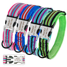 Soft Padded Personalized Dog Collar Nylon Custom Boy Girl Pet ID Collar XS S M L
