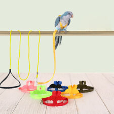 Parrot Harness and Leash Set Adjustable Outdoor Flying Training Rope With W Cw