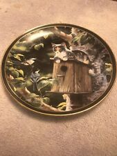 Nosy Neighbors House Sitting Cat Plate By Persis Weirs Bradford Exchange