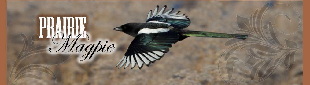Prairie-Magpie
