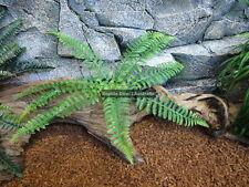 Zcl-019 Artificial Fern 30cm Plant Reptile Enclosure Snake Lizard Frog Jungle