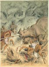 alte Grafik Druck Stich, Nashorn Jagd der Laos von 1850  #E789