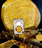 """Treasure Paintings by JR Bissell Mexico 1714"""" Atocha Shipwreck Escudos Gold Coin"""