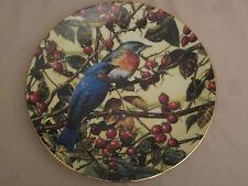 BEAUTIFUL BLUEBIRD collector plate CARL BRENDERS Portraits of Exquisite Birds