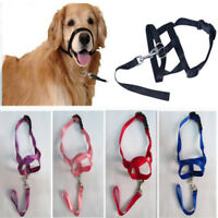 Dog alter Dog Halter  Training Head Collar Gentle Leader Harness Nylon Colorful