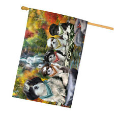 Scenic Waterfall House flag, Dogs, Cat, Pet Photo Lovers Flag Gift, Home Decor