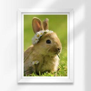 A3 White Framed Prints - Daisy Chain Baby Bunny Rabbit 42X29.7cm #15575