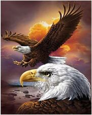 """Fly Eagle 16X20"""" Paint By Number Kit DIY Acrylic Painting on Canvas SPA1811"""