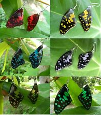 REAL LIME Butterfly Wings Earring Jewelry 925 sterling Hook buyer pick colour