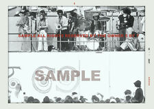 Jimi Hendrix Newport Pop Festival 5 by 7 full stage snapshot Pro Lab Photo