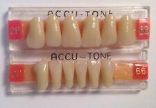 Acrylic Dental Accutone False Tooth Denture Upper & Lower Anterior Set66.2P