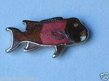 Grouper Fish Pin , (sm)(*)