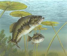 Bass Fishing - Edible Sugar Frosting Cake Sheet Topper
