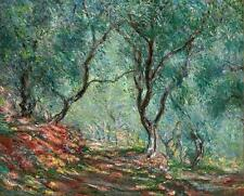 """CLAUDE MONET ~ Olive trees ~ *FRAMED* CANVAS ART Poster ~ 24x16"""""""