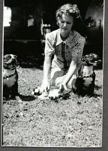 VINTAGE PHOTOGRAPH BOSTON TERRIER DOGS/CAT BASEBALL LLOYD JOHNSON'S WIFE PHOTO