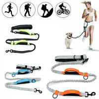 Running & Cycling Dog Lead Puppy Reflective Leash Rope & Clip for Collar Harness