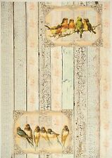 Rice Paper -Shabby Birds Team- for Decoupage Decopatch Scrapbook