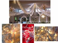Spring Rose Wedding Decoration Light Set, 24 Feet Long, 100 Clear indoor/outdoor
