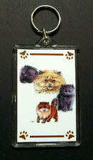 "Persian Kittens #2 Key Chain ~ 2""x3"" ~ New"