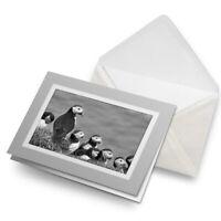 Greetings Card (Grey) BW - Puffins on Mykines Farow Islands  #37872