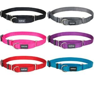 Red Dingo Classic Martingale Collar Hard-Wearing Slip Collar for Dogs FREE P&P
