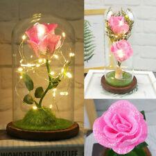 Mothers Day Gift Enchanted Forever Rose Flower In Glass Led Light Graduation