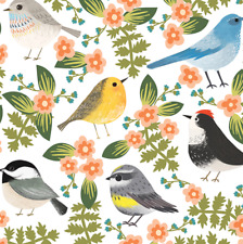 """Little Birdie Gift Wrap Tissue Paper-10 Large Sheets 20"""" by 30"""" Multi-colored"""
