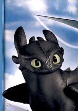 112 - Die geheime Welt - Puzzlekarte - Dragons 3 - Die geheime Welt
