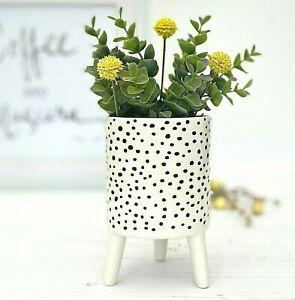 Ceramic Polka Dot Plant Pot On Legs - Indoor Flower Pot Planter - Scandi Style