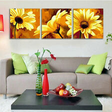 "Set of three Paint by Number 50x50cm (20x20"") African Daisy DIY Painting YT17005"