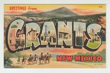 [65366] Old Large Letter Postcard Greetings From Grants, New Mexico