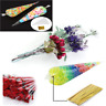 New 100pcs Clear Cellophane Cone Bags Twist Ties Large Party Sweet Cello Candy