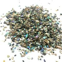 100 Pieces Abalone Paua Shell TINY Craft Manicure Art Vintage Aquarium UK SELLER