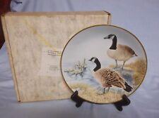 "Danbury Mint 12 Water Bird Plates Summer Collection Canada Goose Iob 9-1/2"""