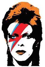 David Bowie   1980's  Bumper Sticker  travel decal